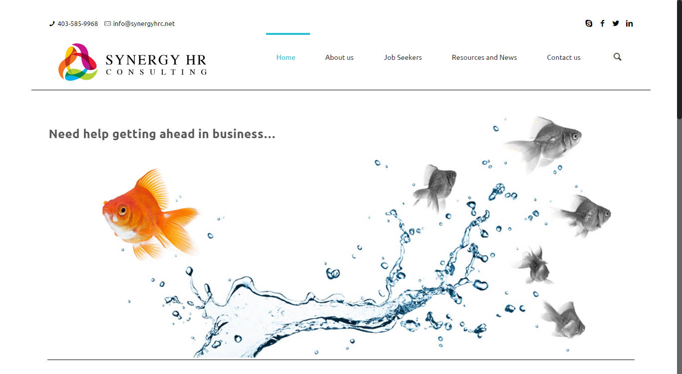 synergy-website-design